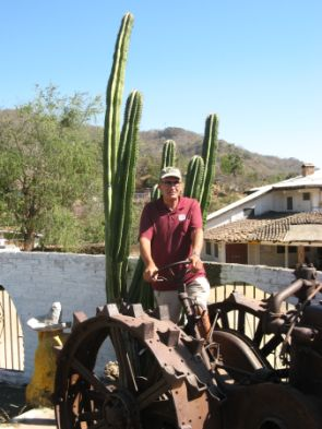 A very old tractor at the restaurant in Copala, and some very impressive cactus